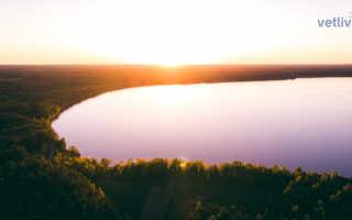 Озеро Нарочь, Беларусь (14 фото, описание, карта)