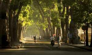 Отдых во Вьетнаме: азиатское приключение