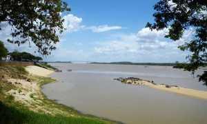 Река Ориноко (где находится, карта)