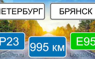 Сколько км от Санкт-Петербурга до Брянска: на машине, поезде, самолете
