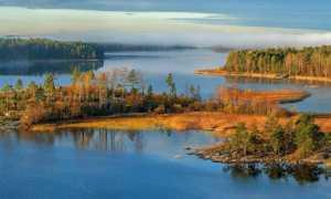 Где находится Ладожское озеро (на карте, координаты)