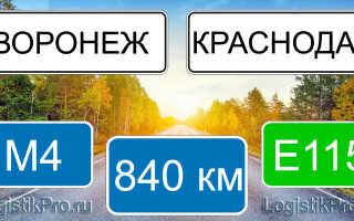 Сколько км от Краснодара до Воронежа? (на машине, поезде, самолете)