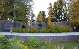 Сухумский обезьяний питомник, Абхазия (7 фото, отзывы, адрес)