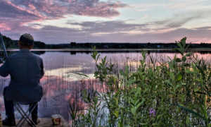 Отдых и рыбалка на Селигере