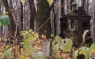 Смоленское кладбище, Санкт-Петербург (как добраться от Приморской, Василеостровской)