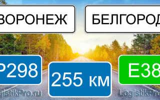 Сколько км от Воронежа до Белгорода? (на машине, поезде)