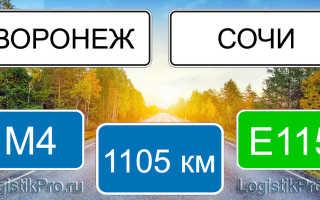 Сколько км от Воронежа до Сочи: на машине, поезде, самолете