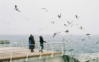 Отдых в Крыму в январе 2020 (погода, цены, отзывы туристов)